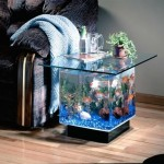 Ý tưởng trang trí nhà độc đáo cho những người yêu cá cảnh 1